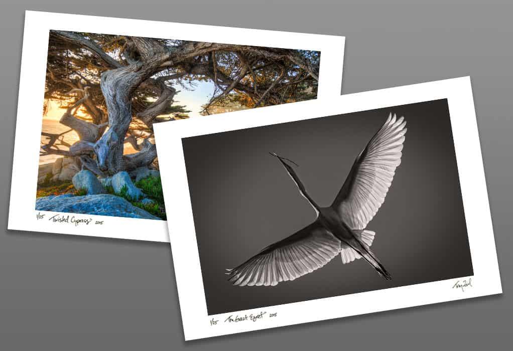 Purchase Fine Art Photography by Troy Ziel